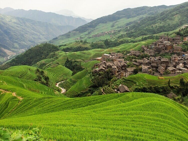 Longji Rice Terraces – a guide for tourists