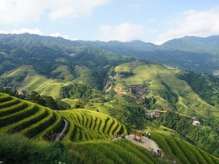 Terraced rice fields Longji