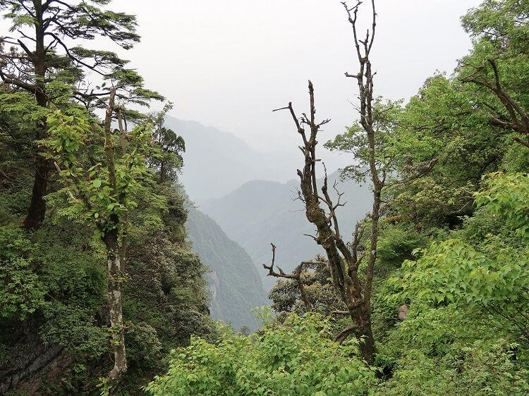Mount Emei near Chengdu