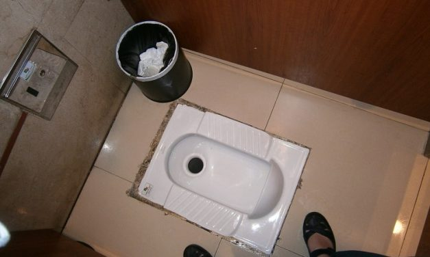 Chinese toilets (10 tips to survive the squat!)