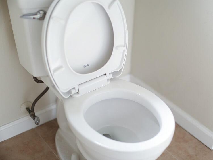 western toilet